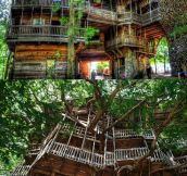 World's Largest Treehouse