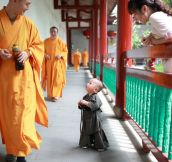 Adorable Little Monk