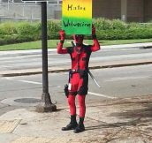 Another Crazy Protester