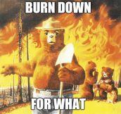 I Just Found Smokey's New Slogan