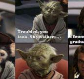 Jedi Graduation Photo