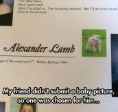 He Seems A Little Sheepish