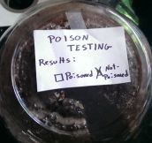 Poison Testing