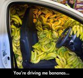 The Banana Car