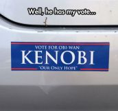 Well Don't Blame Me, I Voted For Vader