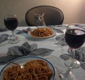 Dinner With Your Special One