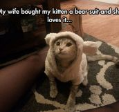 Kitten In A Bear Suit