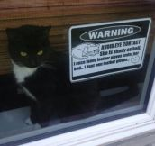 The Neighbors Needed To Be Warned
