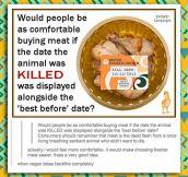 When Vegan Ideas Completely Backfire