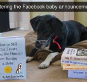 Baby Facebook Announcement