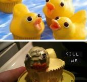 Duckcakes Fail