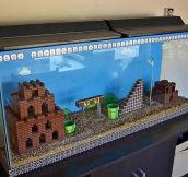 Best Fishtank Ever
