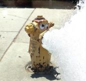 A Fire Hydrant With Googly Eyes
