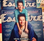 It's Wahlbergs All The Way Down