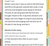 Best Story I Have Ever Read