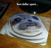 The Coolest Mouse Pad