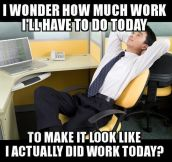 Every Day At The Office