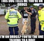 A Talking Dog