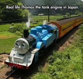 Real Life Thomas The Tank