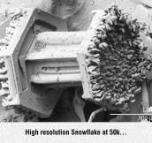 Snowflake Under Electron Microscope