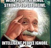 Wise Words, Einstein