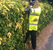 A Bushy Officer