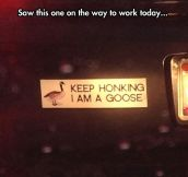Just Keep Honking
