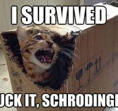 Schrodinger's Cat Revenge