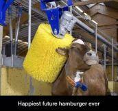 Vegetarians Gonna Hate