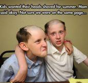 New Summer Haircut