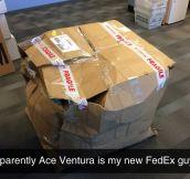 New FedEx Guy