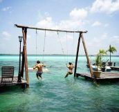 Awesome Swing In The Ocean