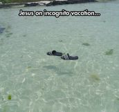 Jesus During The Summer