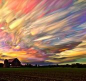 Time Lapse Photo Of Hundreds Of Sunsets
