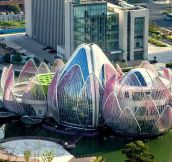 The Lotus Building In Wujin, China