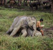 Mowgli, Tell Me A Story