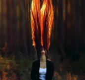 Like Fire Wings