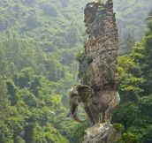 Elephant Carved From Rock
