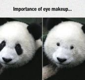 Why Eye Make-Up Is Important
