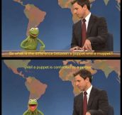Kermit Is Not A Puppet
