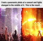 Panoramic Photo At A Concert