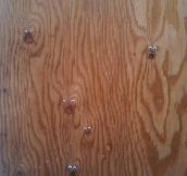 Eyebombing The Wood's Marks