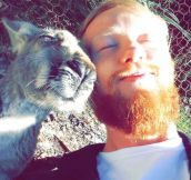 A Kangaroo Selfie