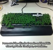 Eco Friendly Keyboard