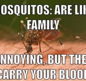 Mosquitoes Are Like Family