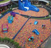 Paradise For Any Kid