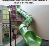 Never Too Old For A Slide
