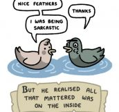 The Story Of Ugly Duck
