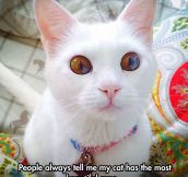 There Is A Universe In Those Eyes