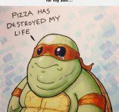 Poor Ninja Turtle